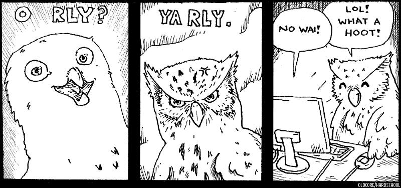O RLY? Owls